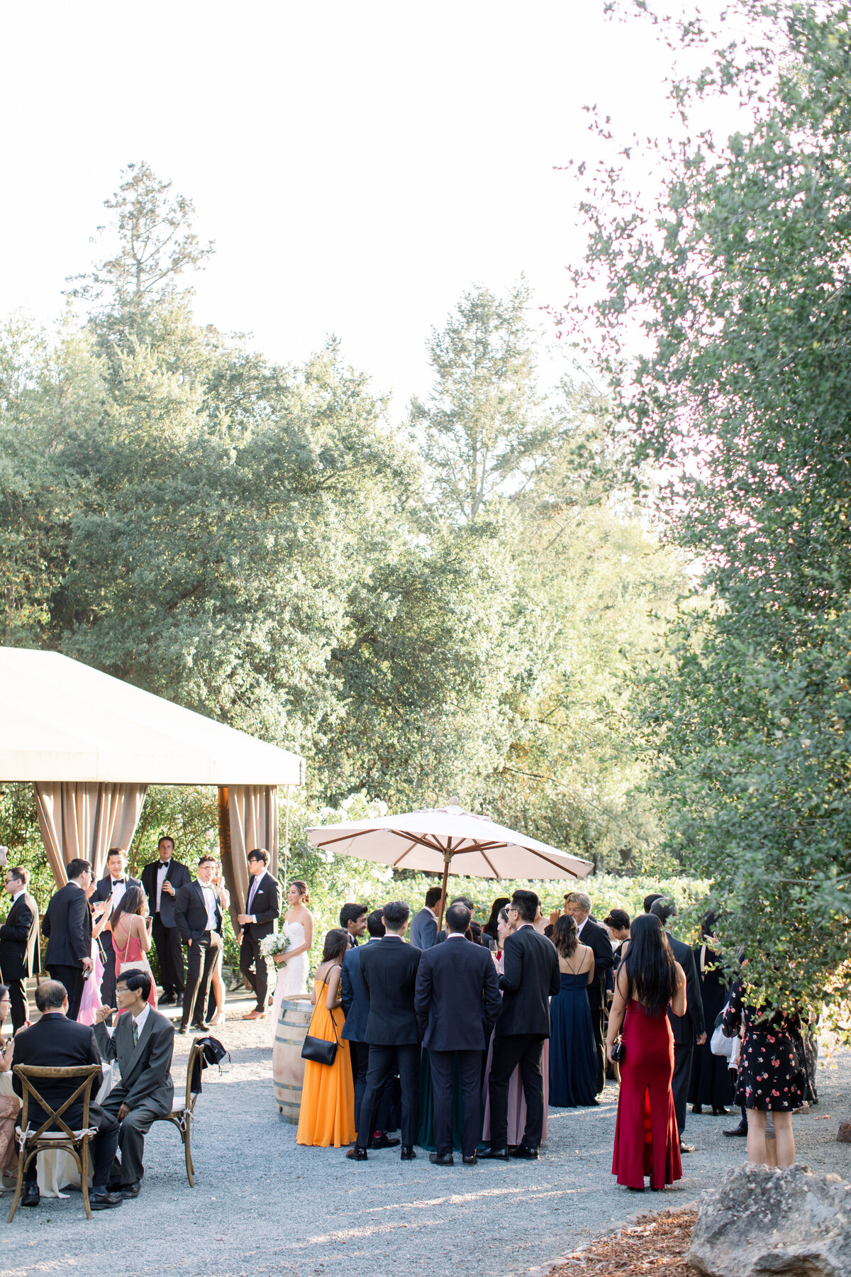Solage_Calistoga_Auberge_Wedding-078