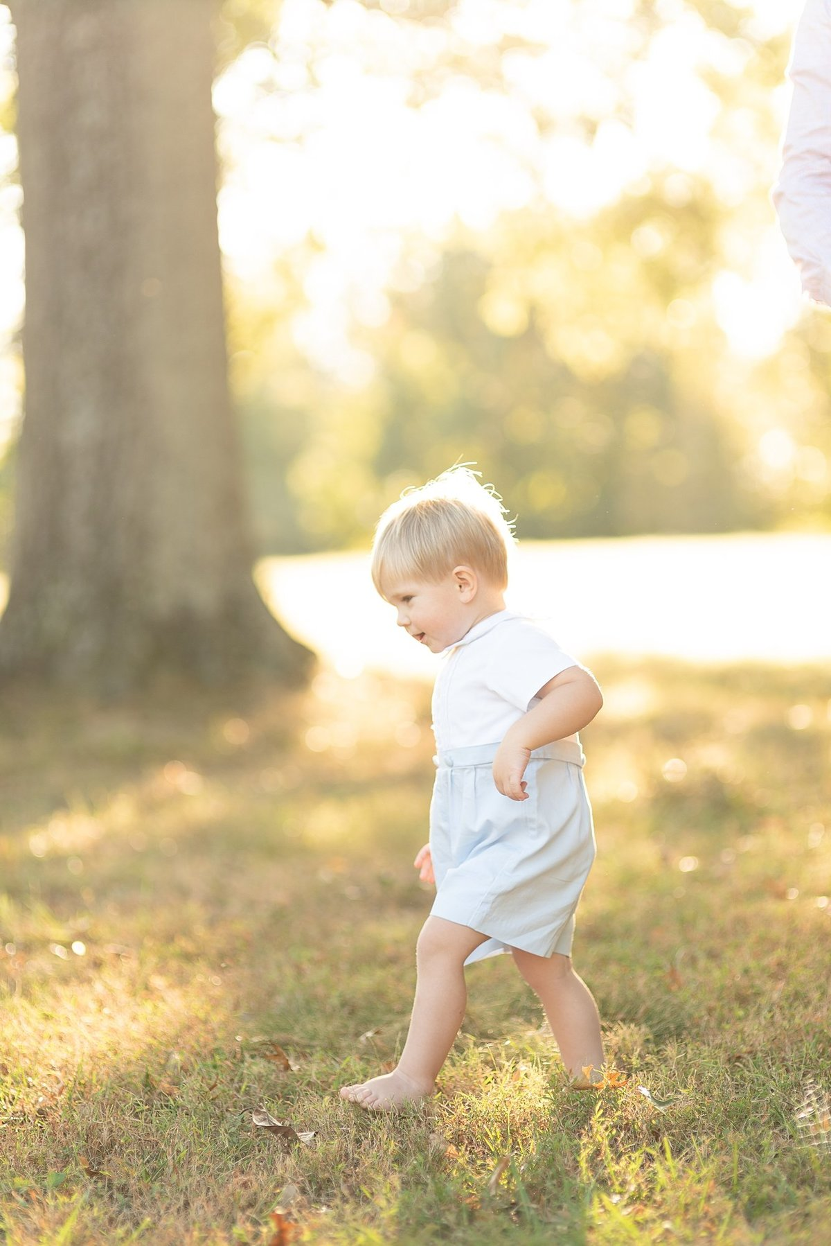 Toddler is walking barefoot for a family session with golden light around him in Nashville