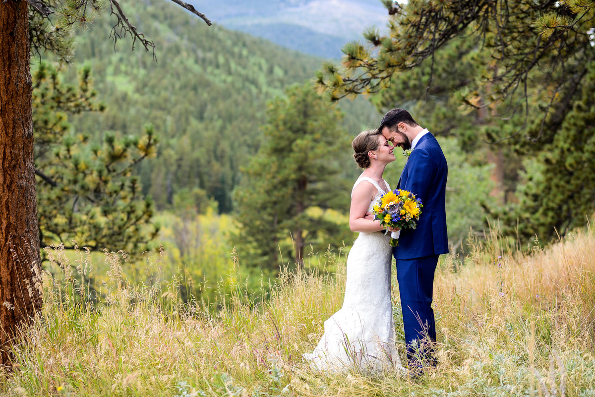 visual poetry by meghan estes park wedding photographer