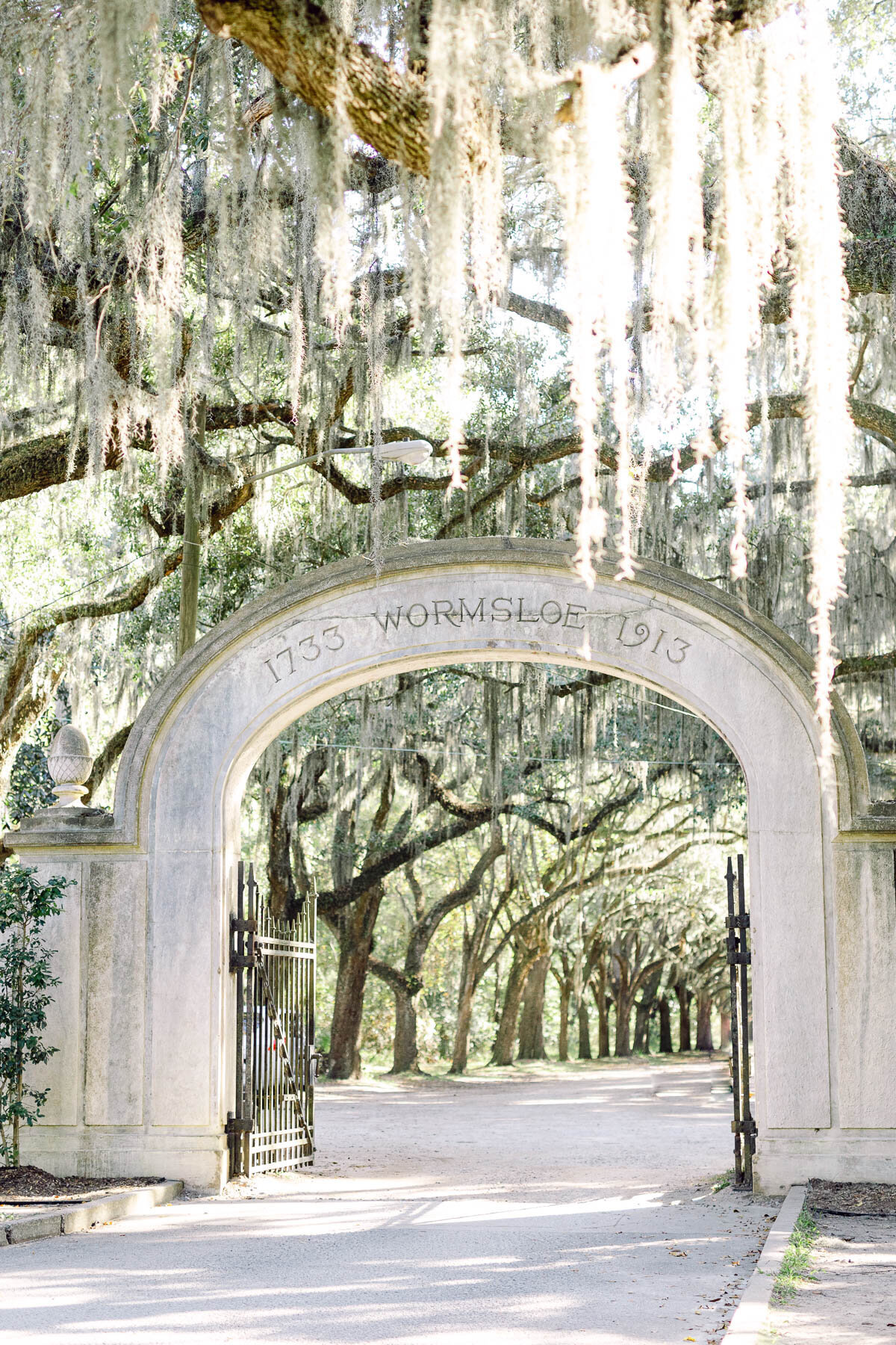 wormsloe-engagement-photo-4