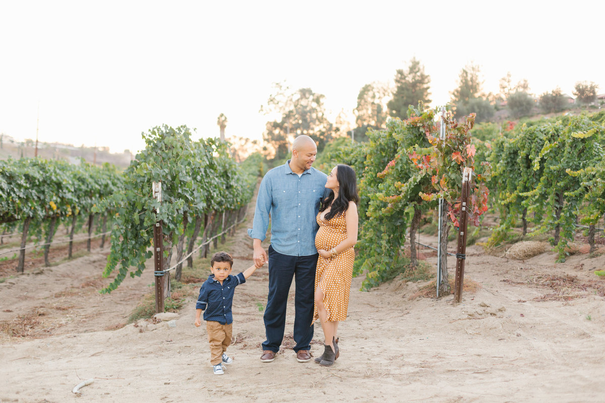 southern-california-family-mini-session-2
