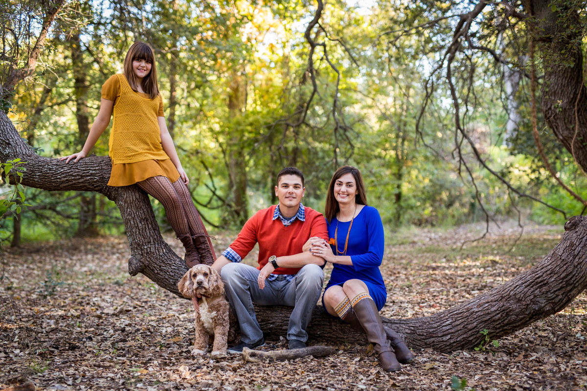 family portrait sitting under tree by San Antonio Photographer Expose The Heart photography