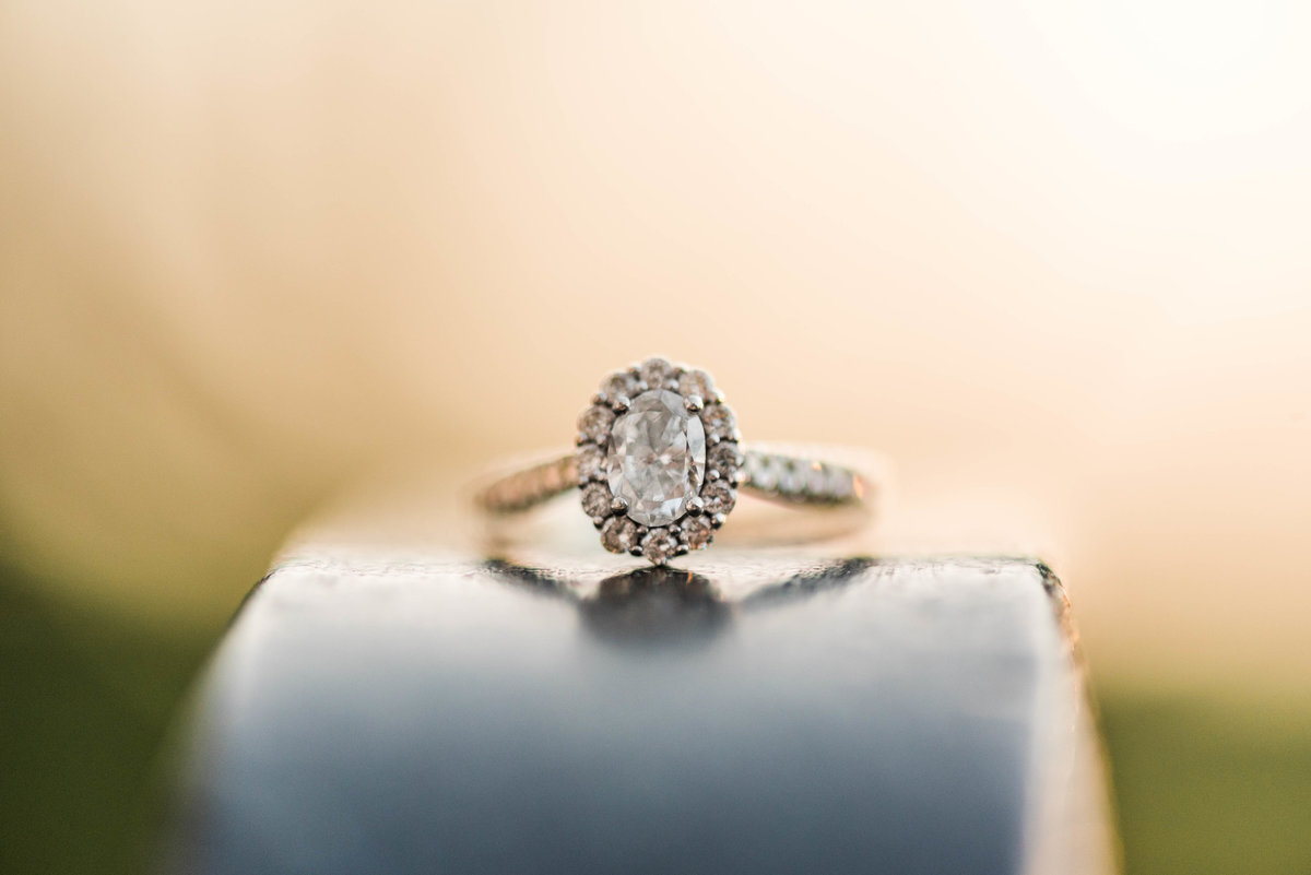 Summer_Andy_Engaged-4745