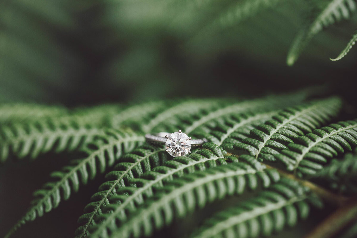 solitare-engagement-ring-photography
