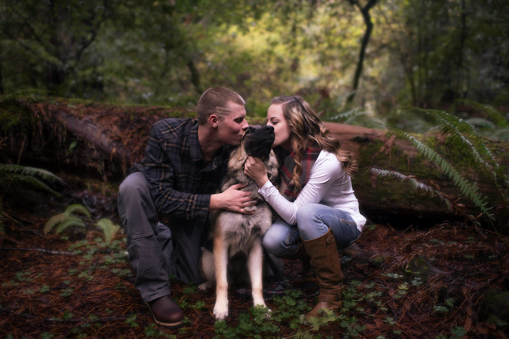 Redway-California-engagement-photographer-Parky's-Pics-Photography-Humboldt-County-redwoods-Avenue-of-the-Giants-engagement-7.jpg