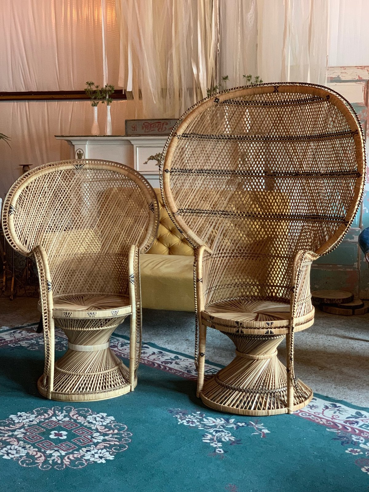 rattan peacock chairs