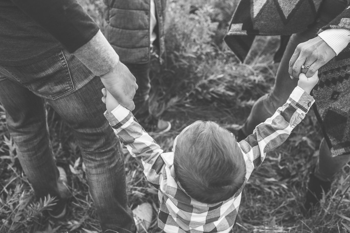 close up of little boy holding his parents hands {Oakville Family Photographer}