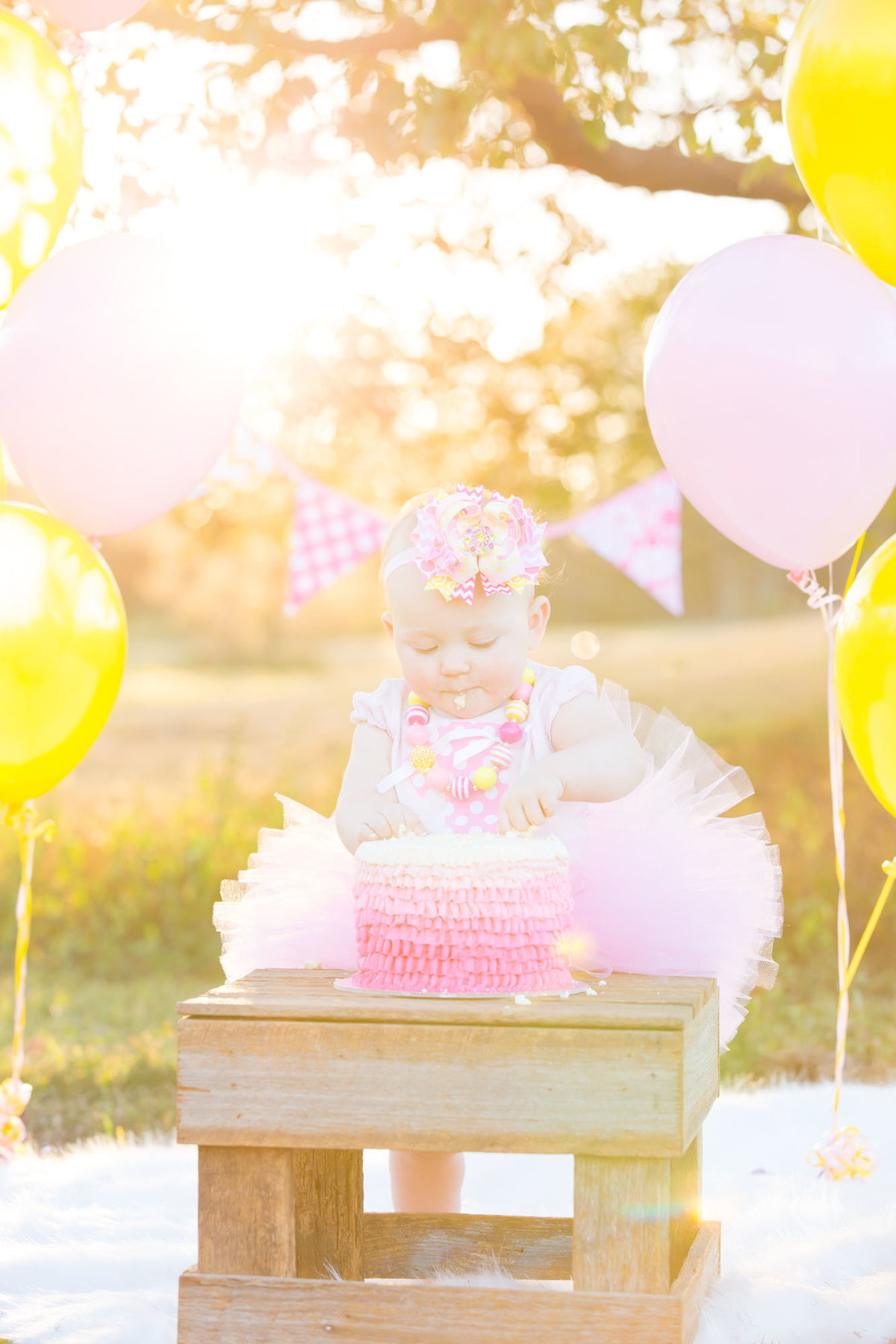 First Birthday Cake Smash Photographer