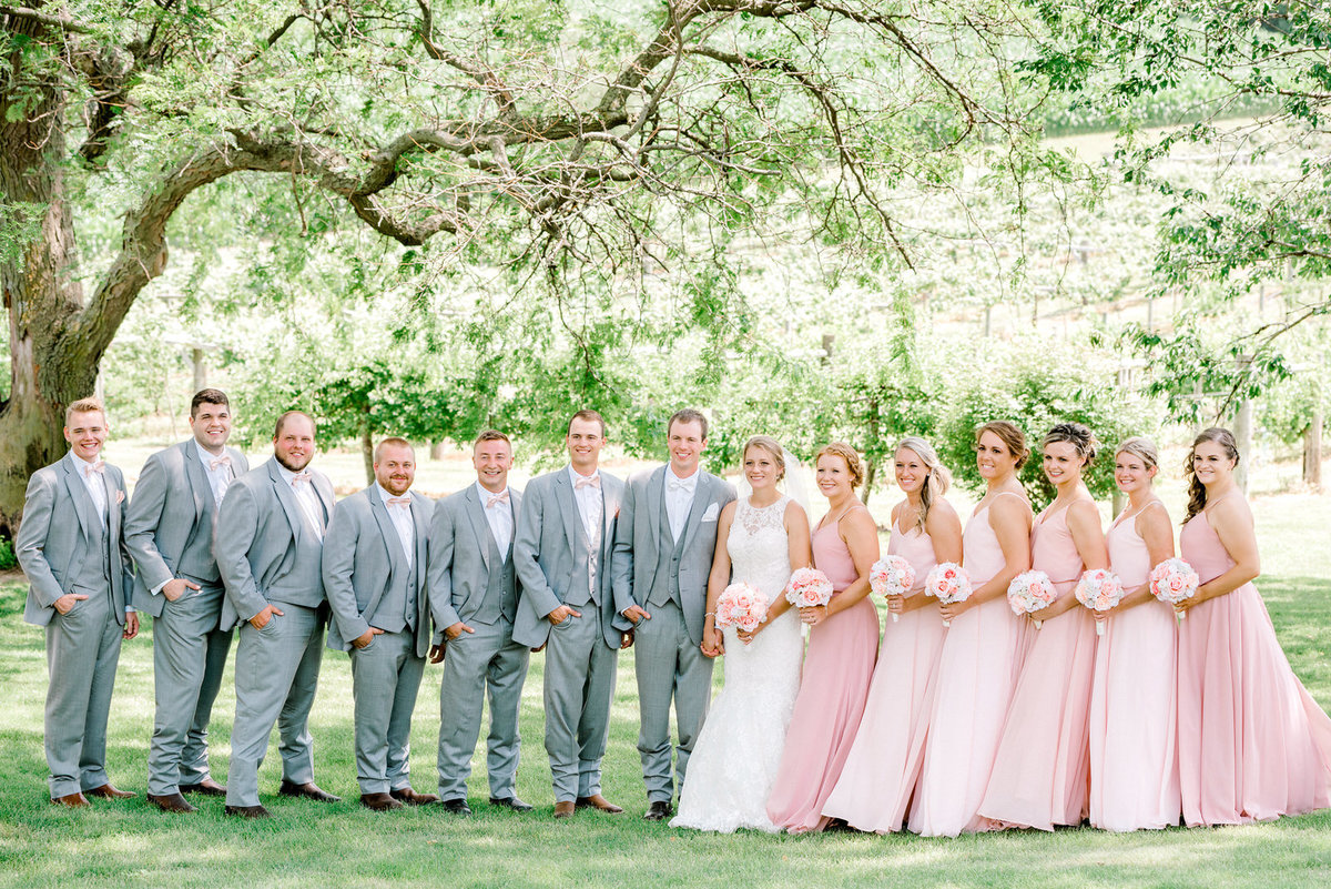 bridal party foxridge winery Iowa