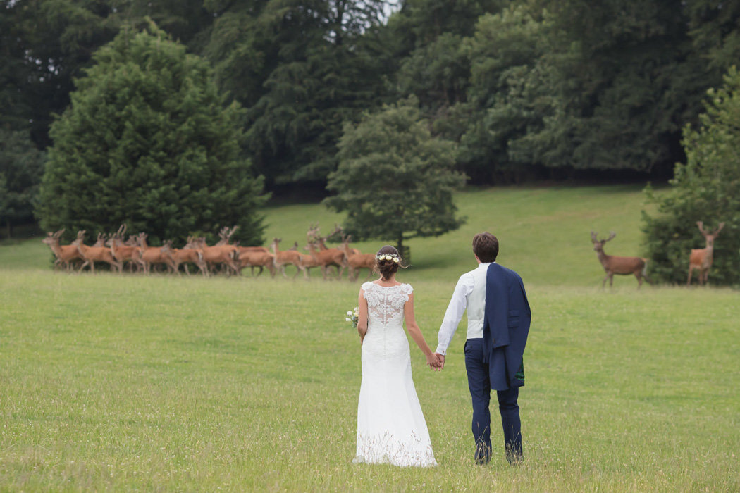 Couple in the Deer Park at Bridwell Estate Wedding