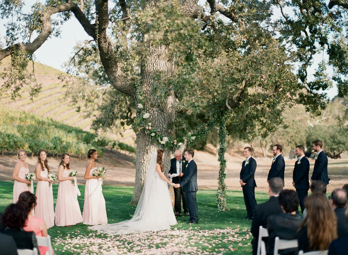 Triunfo Creek Vineyard Wedding-000084680010