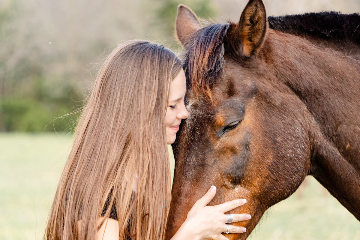 Girl in Dallas nuzzling horse with her hand on his cheek