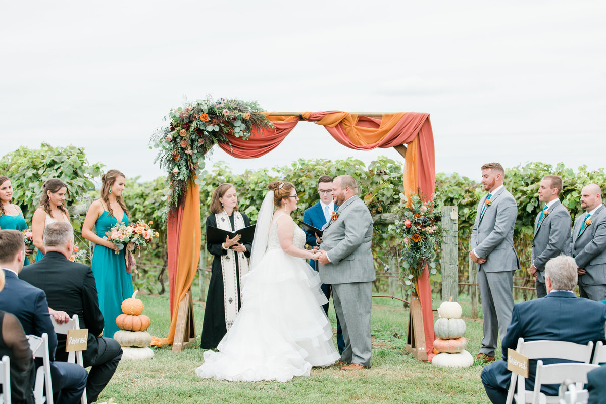 Bluestone_Vineyard_Fall_Wedding_Virginia_DC_Photographer_Angelika_Johns_Photography-4225