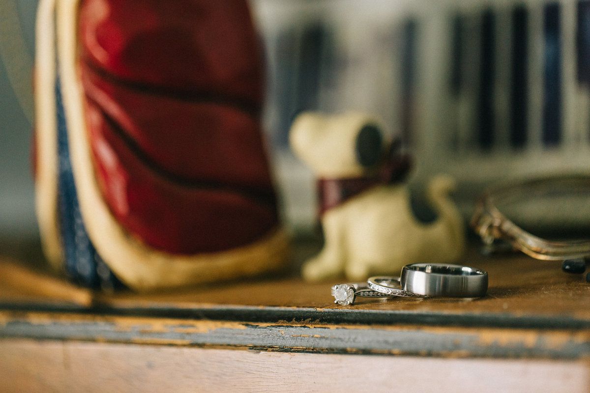 Wedding Rings by Grand Rapids Wedding Photographer Sidney Baker-Green