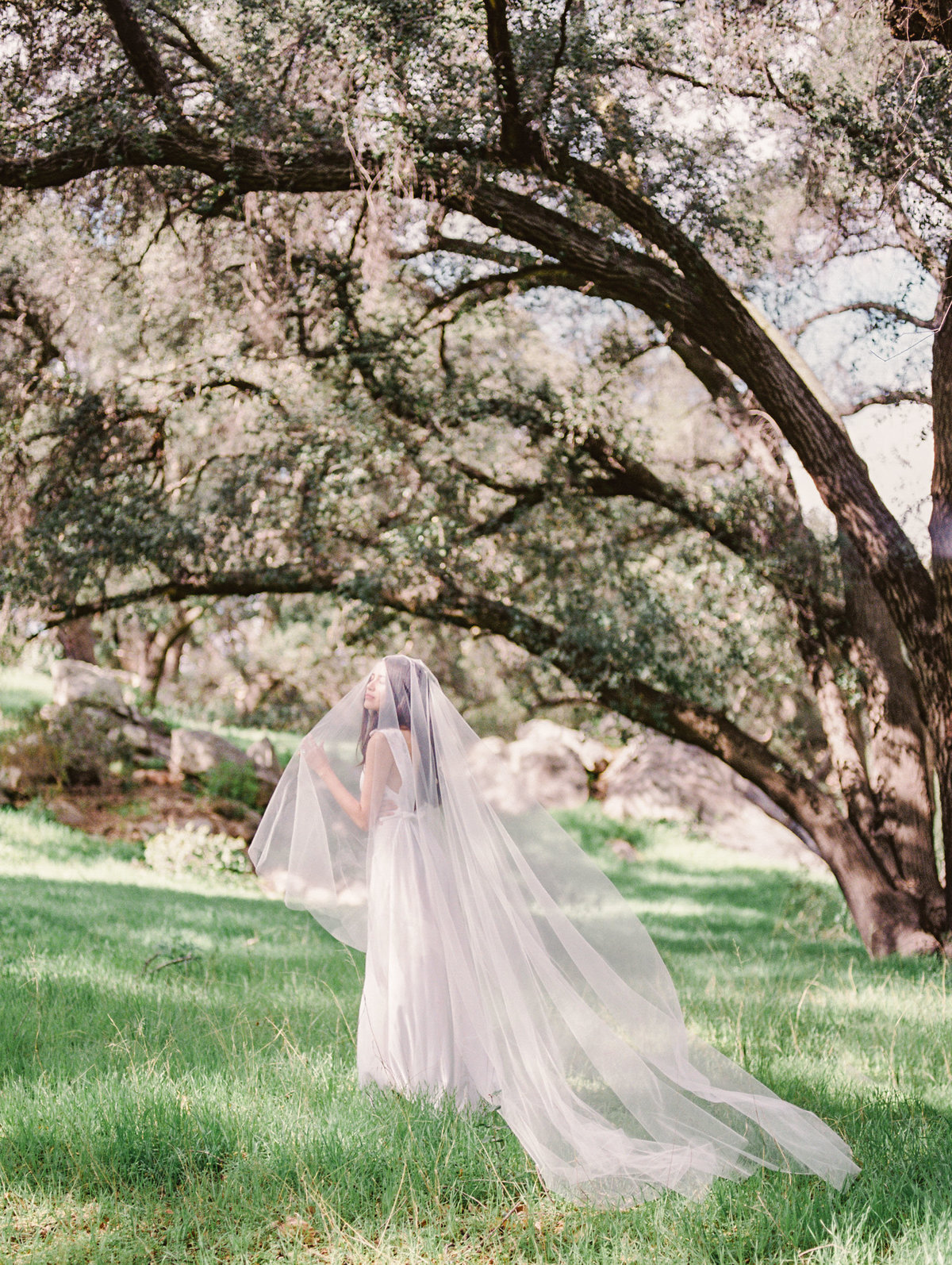 Babsie-Ly-Photography-Fine-Art-Film-Wedding-Bridal-Editorial-in-Hidden-Oaks-San-Diego-039