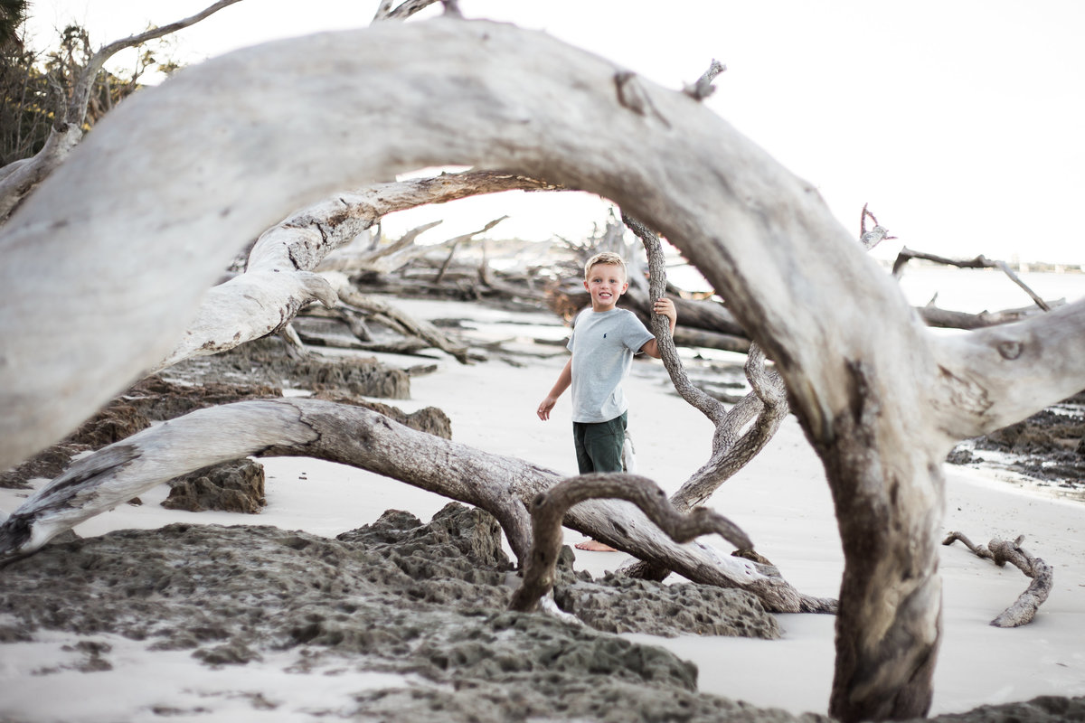 A portrait of a school aged child playing among dead trees at Big Talbot Island Jacksonville Family Photographer