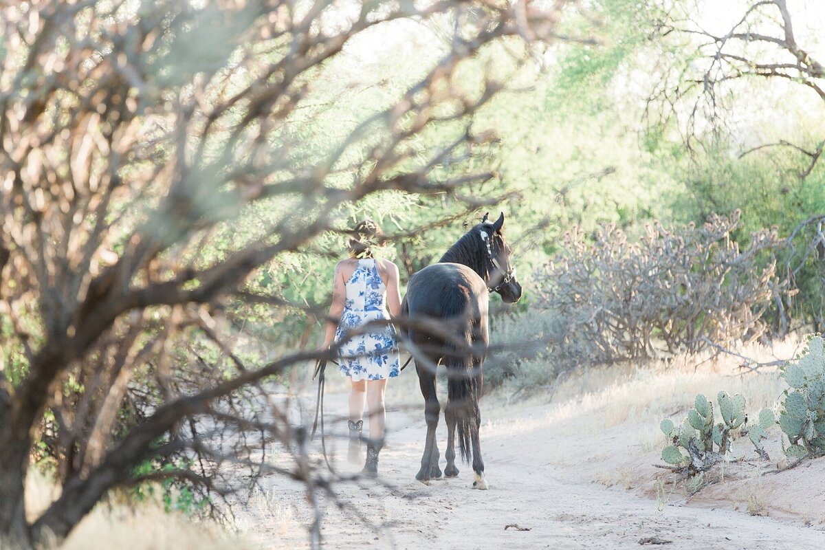 girl and her black horse walking away from the camera