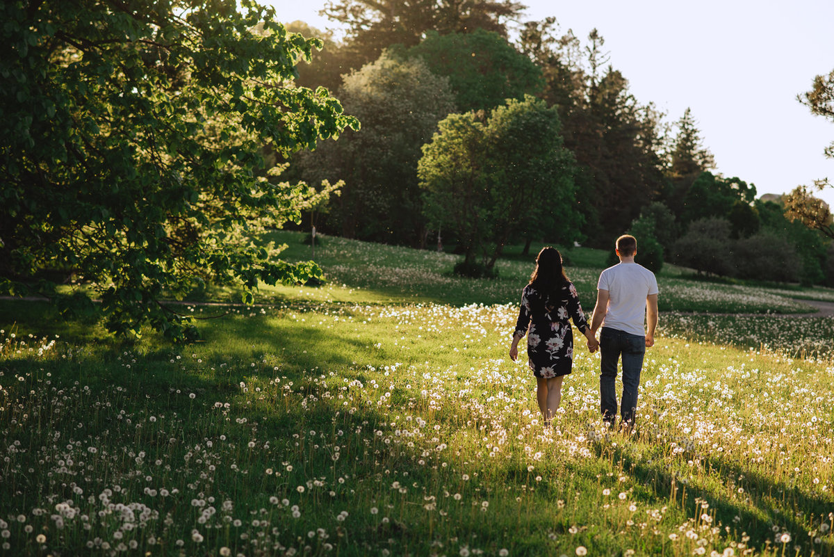 engaged couple walking a field of dandelions at sunset