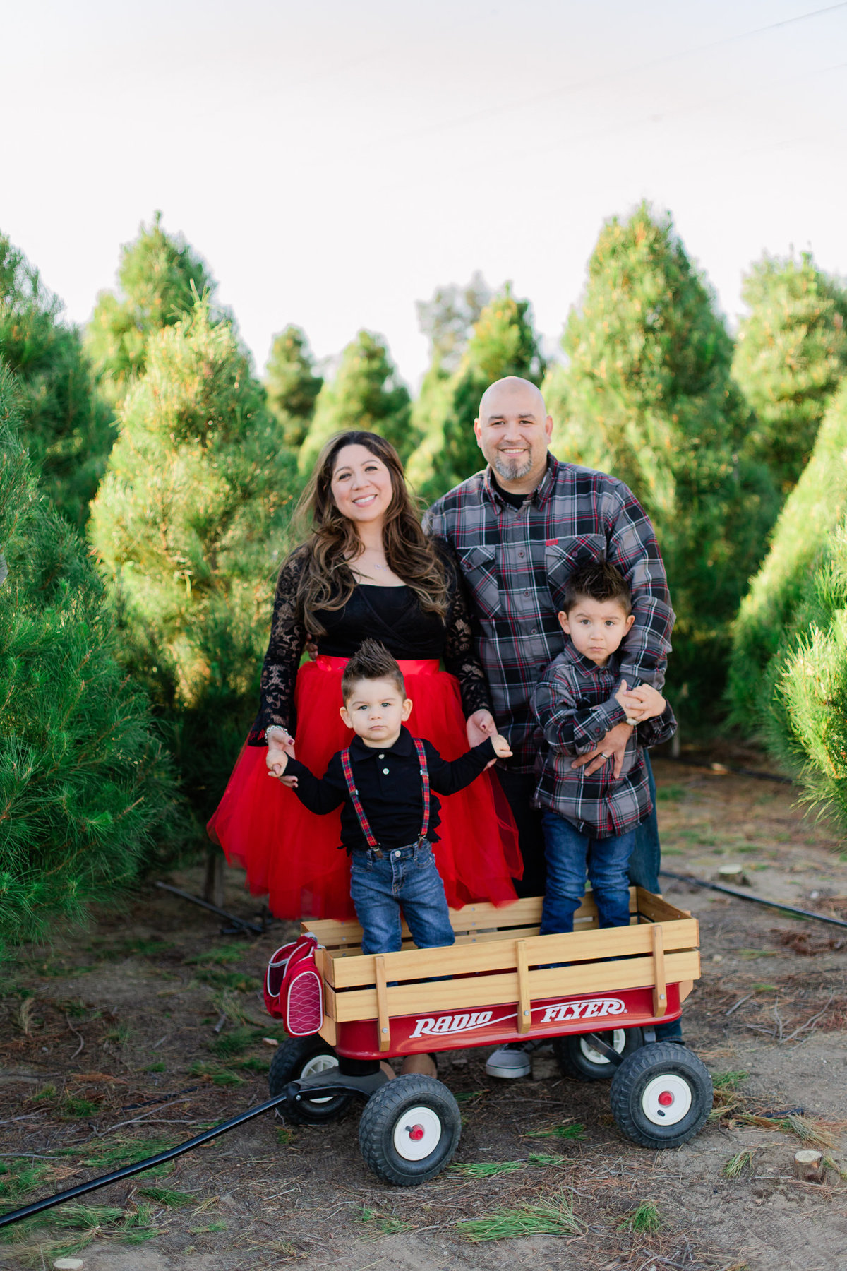 Xmas Photography, Rye Farm Christmas Tree, Family Photography S&V-11