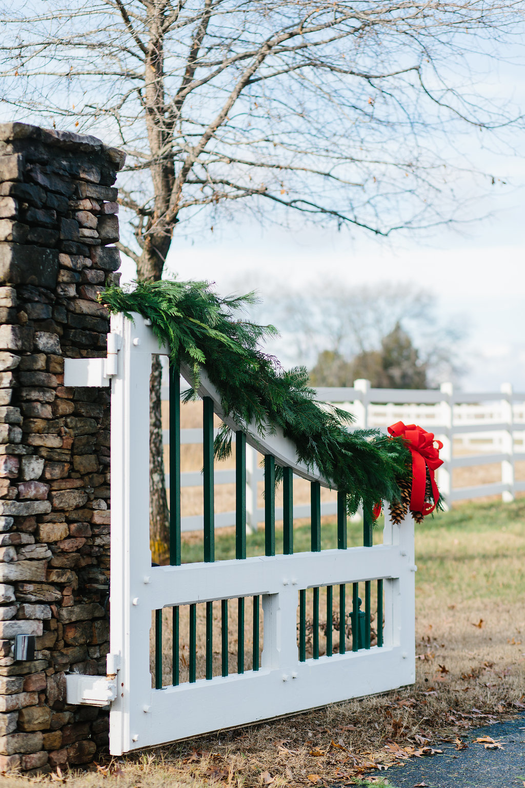 Marblegate_Farm_Christmas_Abigail_Malone_Photography_-223