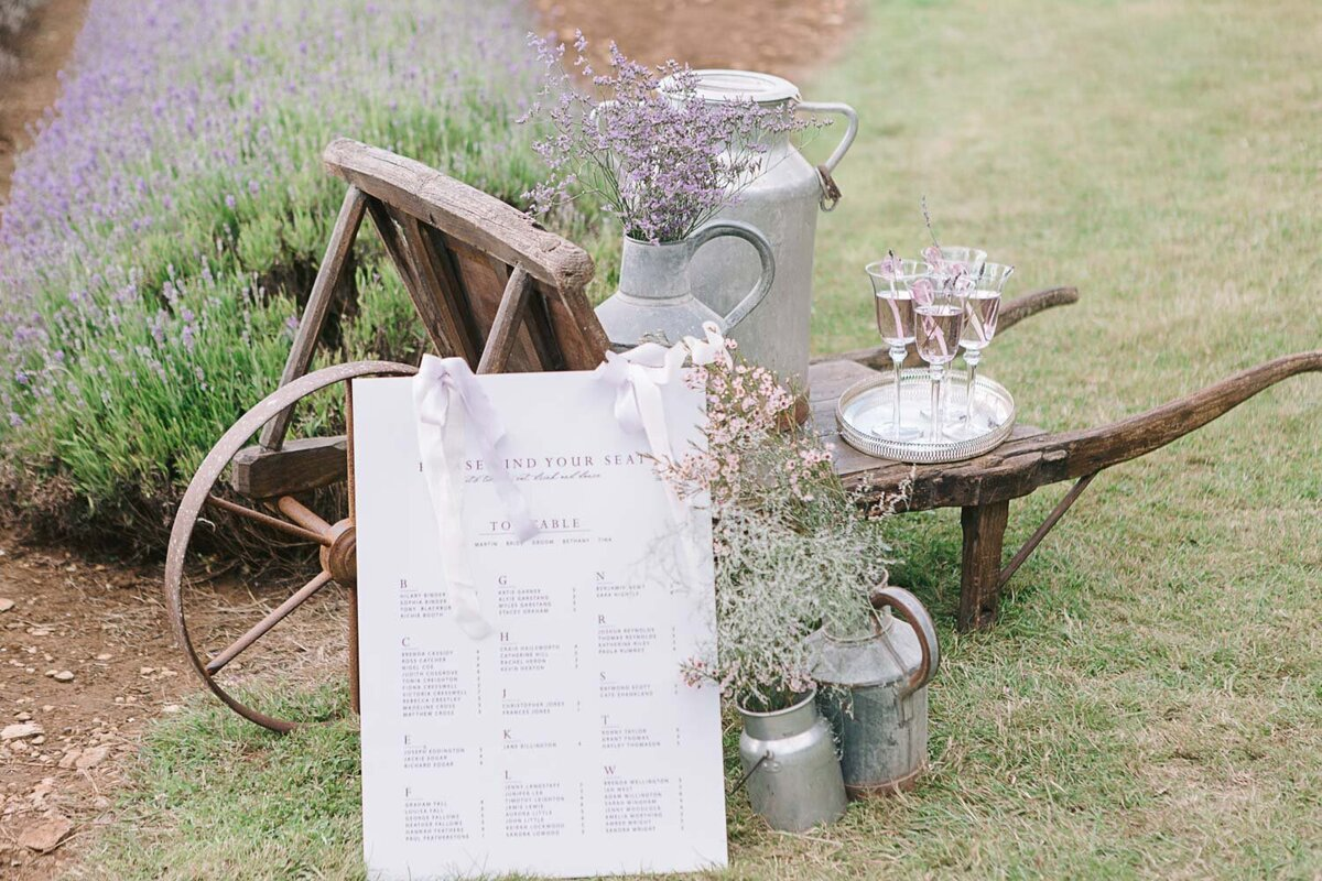 Provence Inspired Lavender Shoot-4