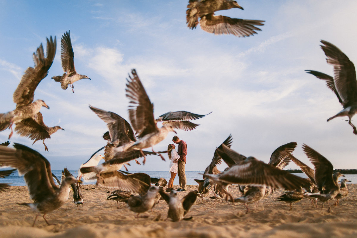 Seagulls scatter as couple embraces on the beach in Newport Beach, Ca.