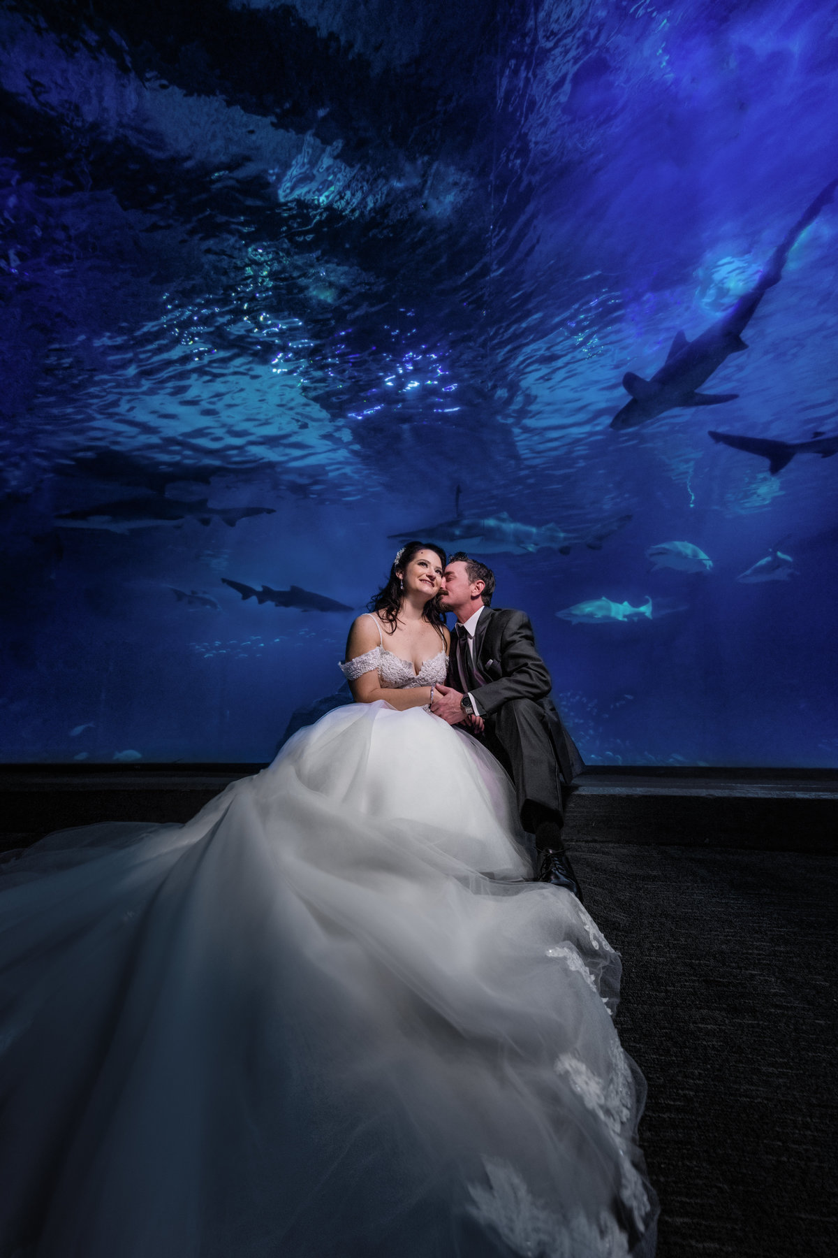 Bride and Groom in the shark tank at aquarium