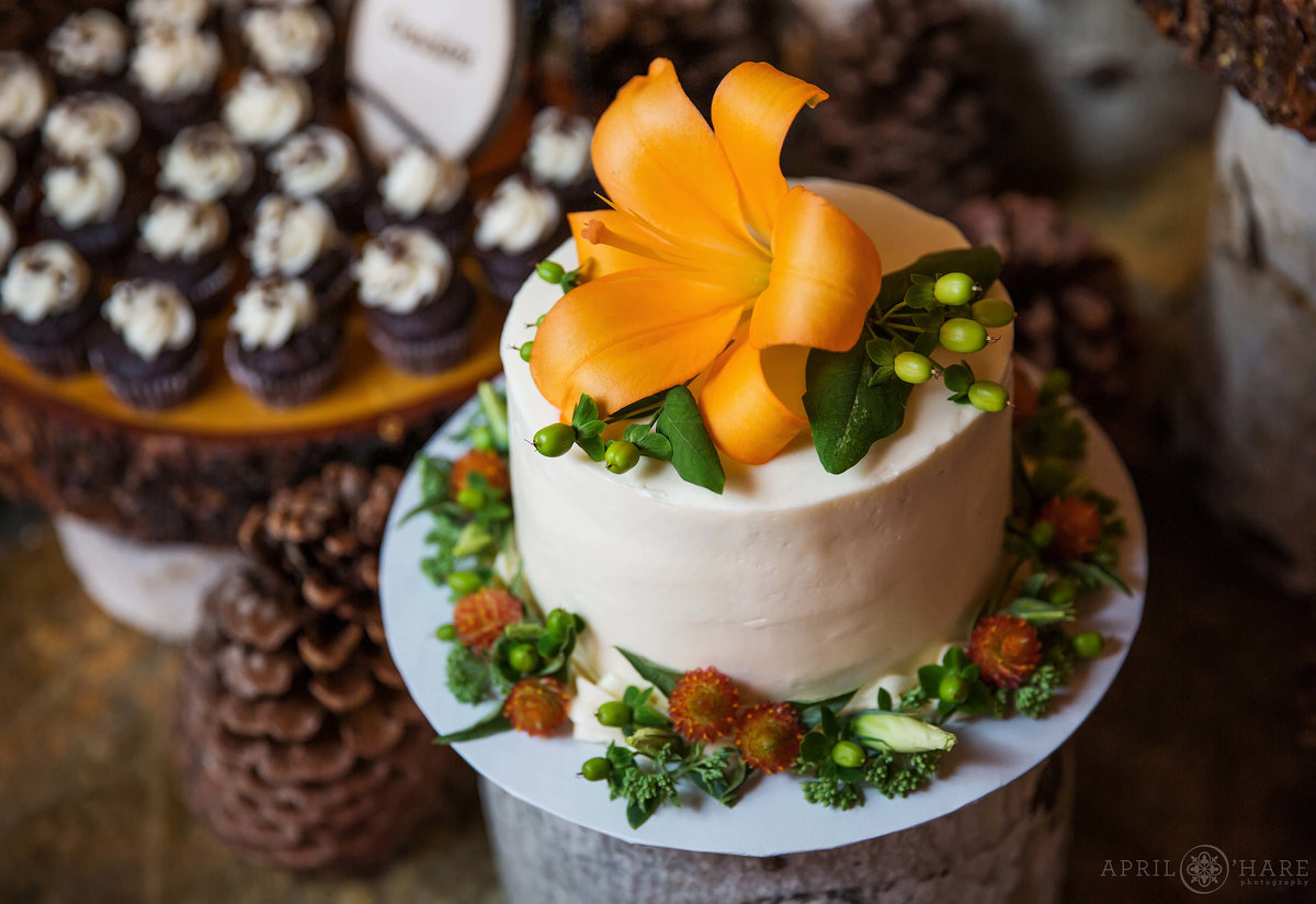 Colorado Wedding photographer pretty cute cake with orange orchid at Wedgewood Weddings Mountain View Ranch in Pine