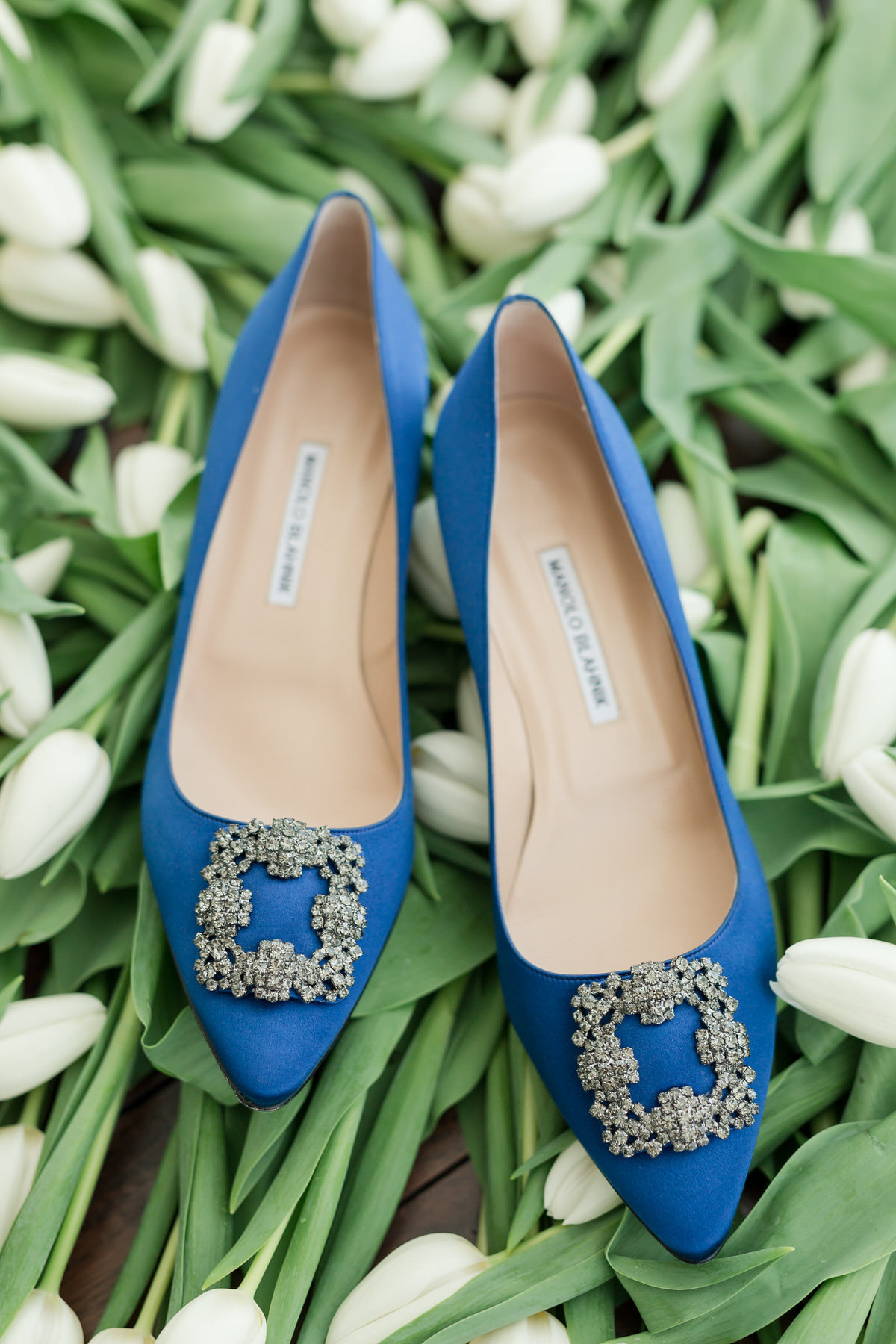 manolo blahnik, brid shoes