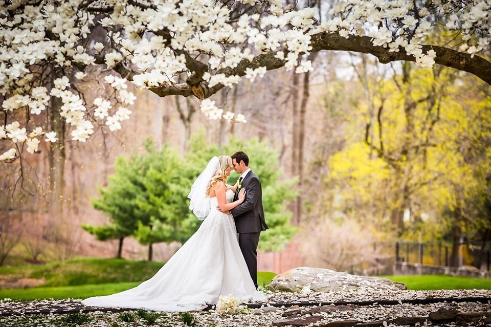Bride and groon under the sakura tree in ambler pa