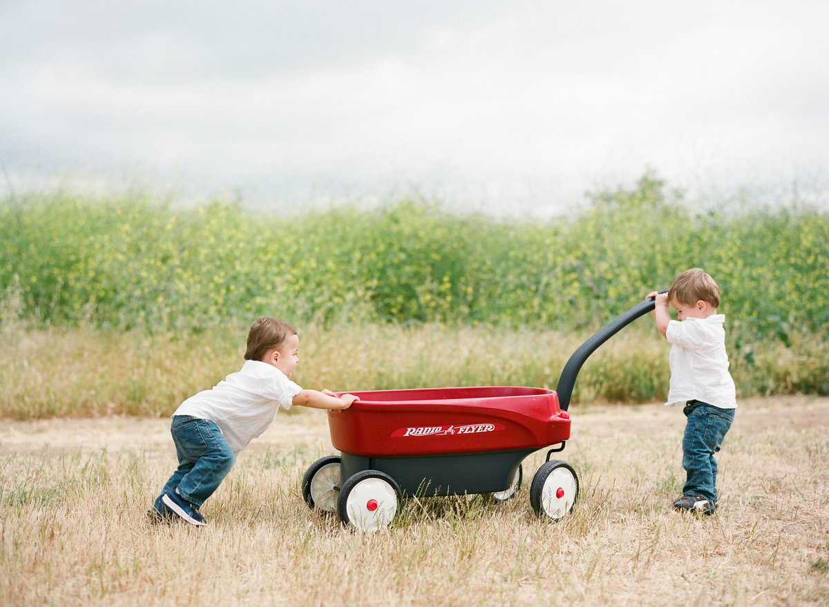 red_wagon_twins