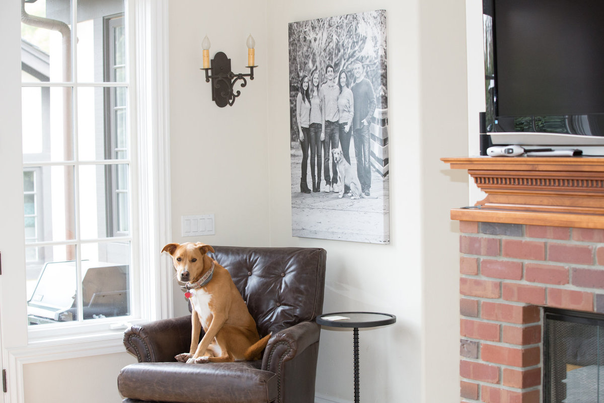 Wall Art of Family and Dog Photography