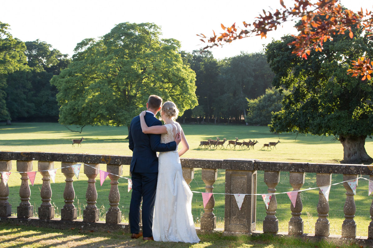 deer in the park at bridwell wedding photo