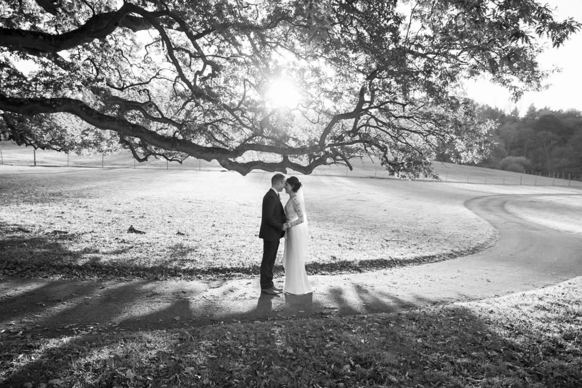 Autumnal Wedding at St Audries Park Somerset