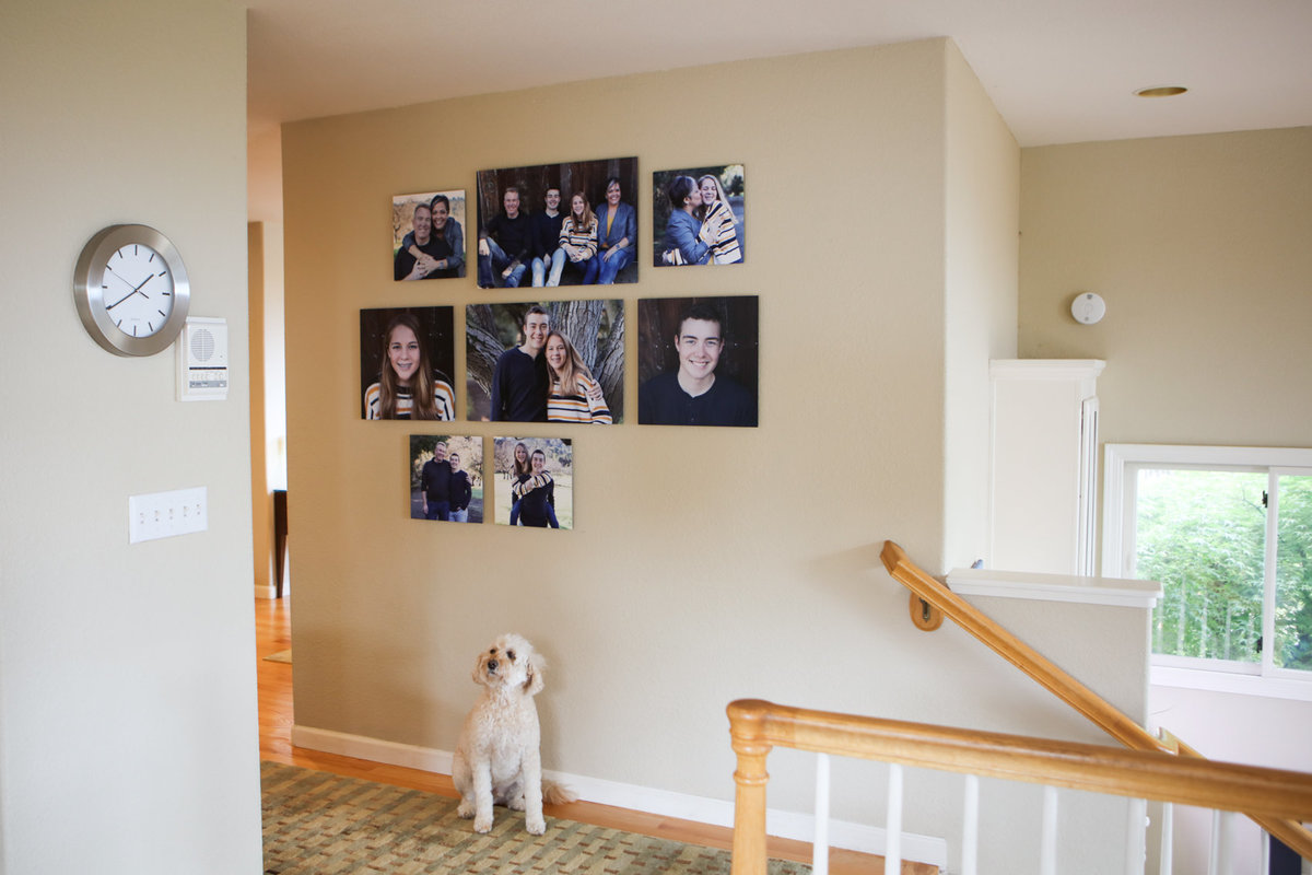 Family photography installation, finished product
