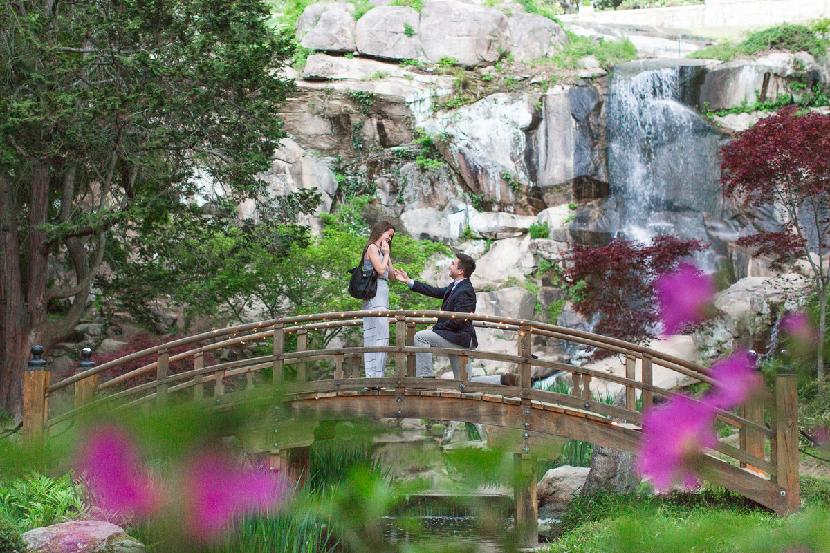 Stephanie + Clarke Proposal in Maymont