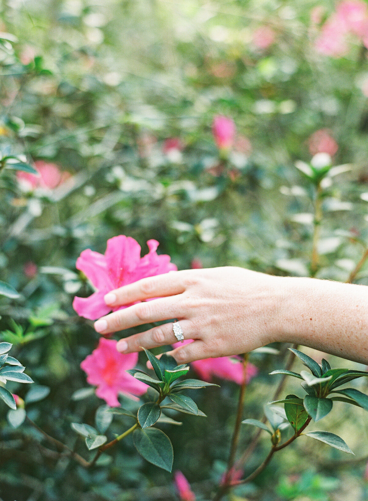 Napl-Florida-Engagement-film-photogrpaher-koreshan-state-park-26