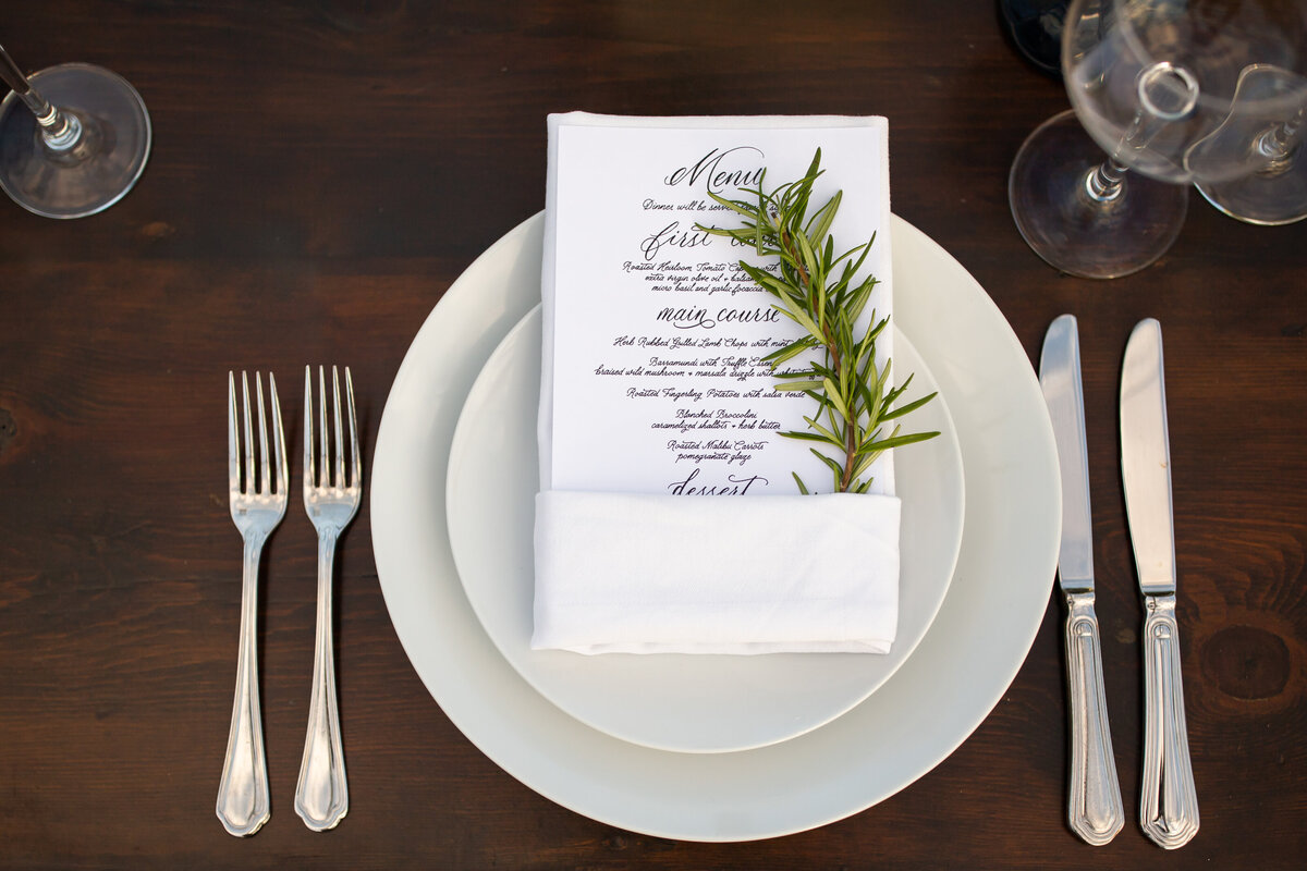 private-home-wedding-the-plains-va00013