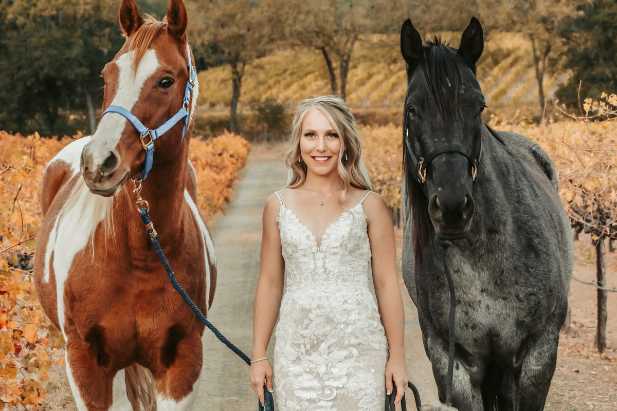 bride with horses in vineyards