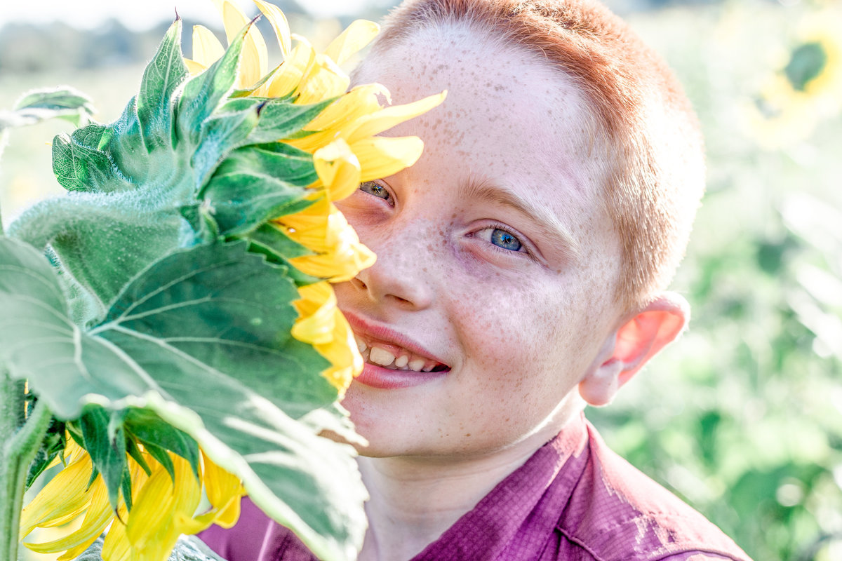 Red_Head_SunFlowers_06