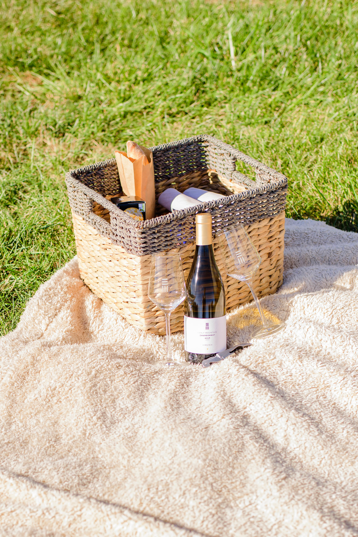 Picnic-and-Wine-Early-Mountain-Vineyards