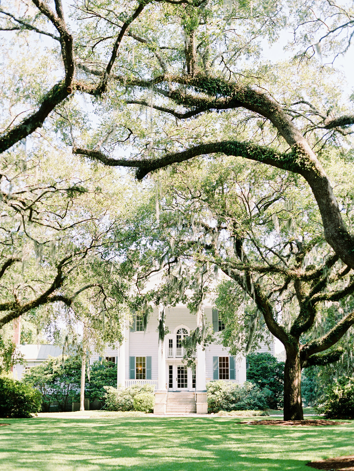 McLeod-Plantation-Charleston-Wedding-10