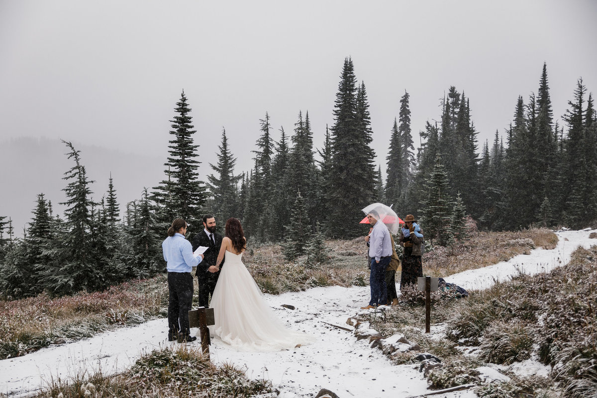 Mount-Rainier-Adventure-Elopement-56