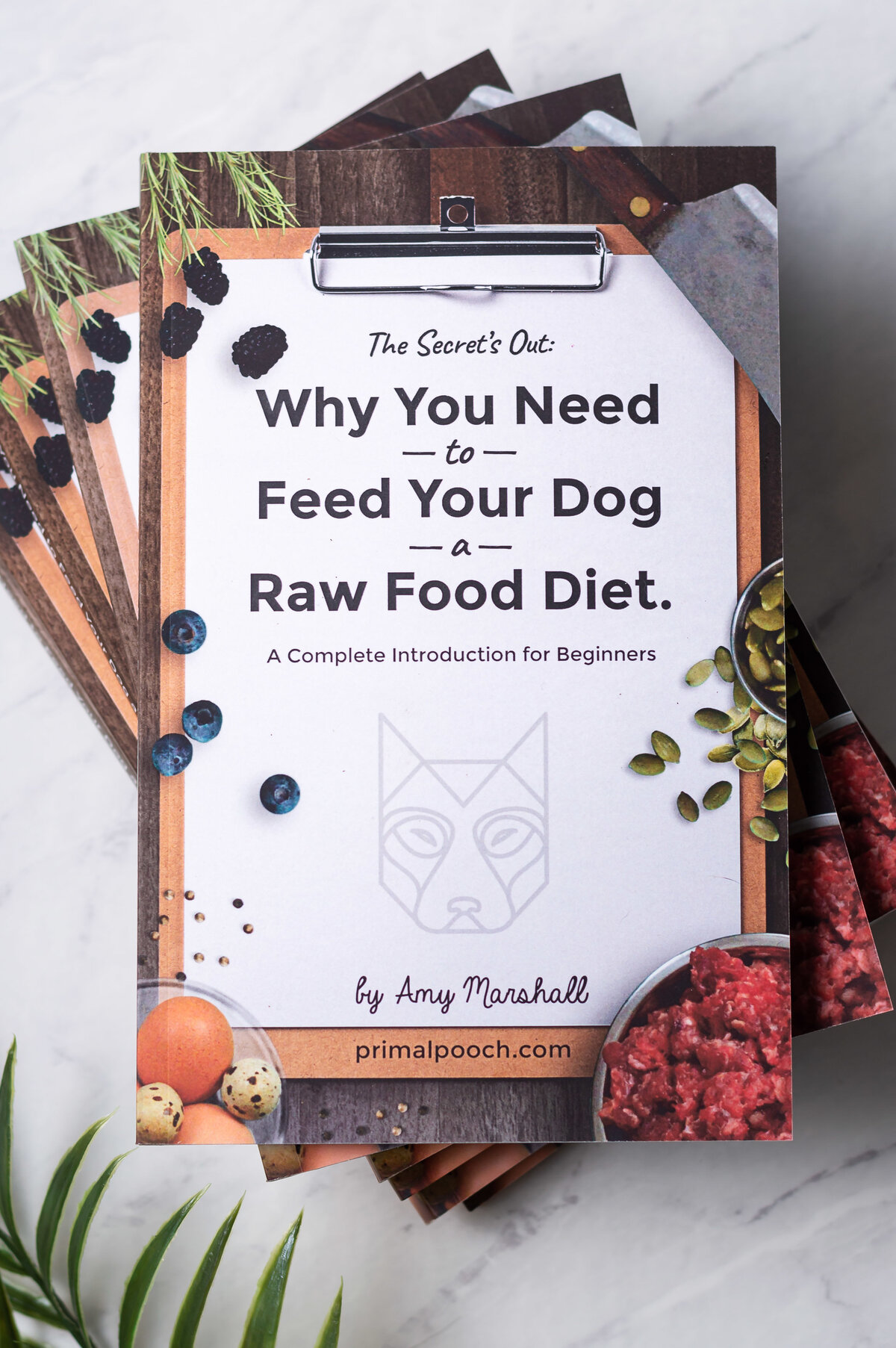 why-feed-raw-book-final-20