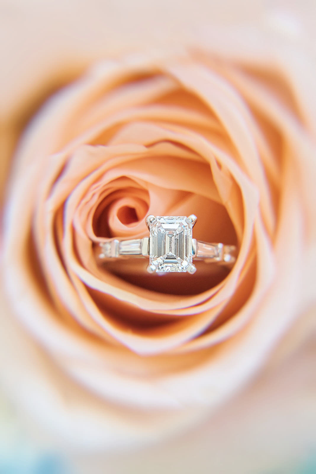 wedding ring in flower