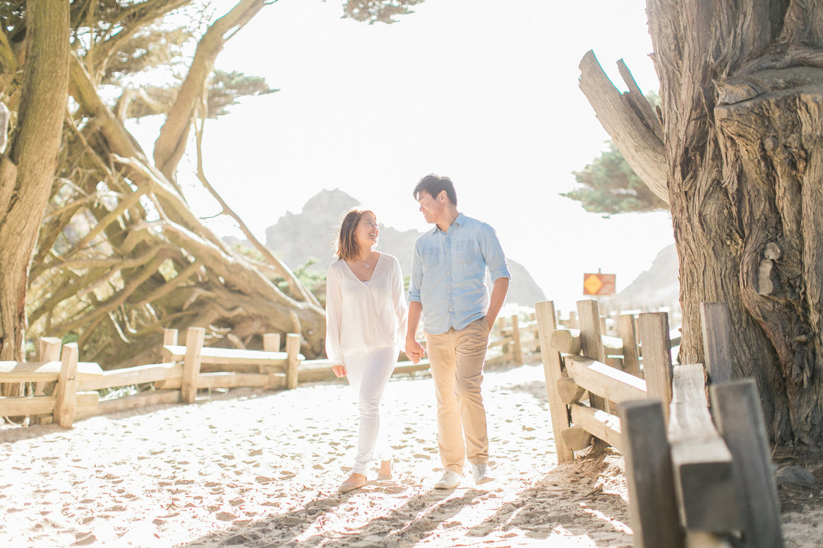 Big Sur Beach Engagement Photos California