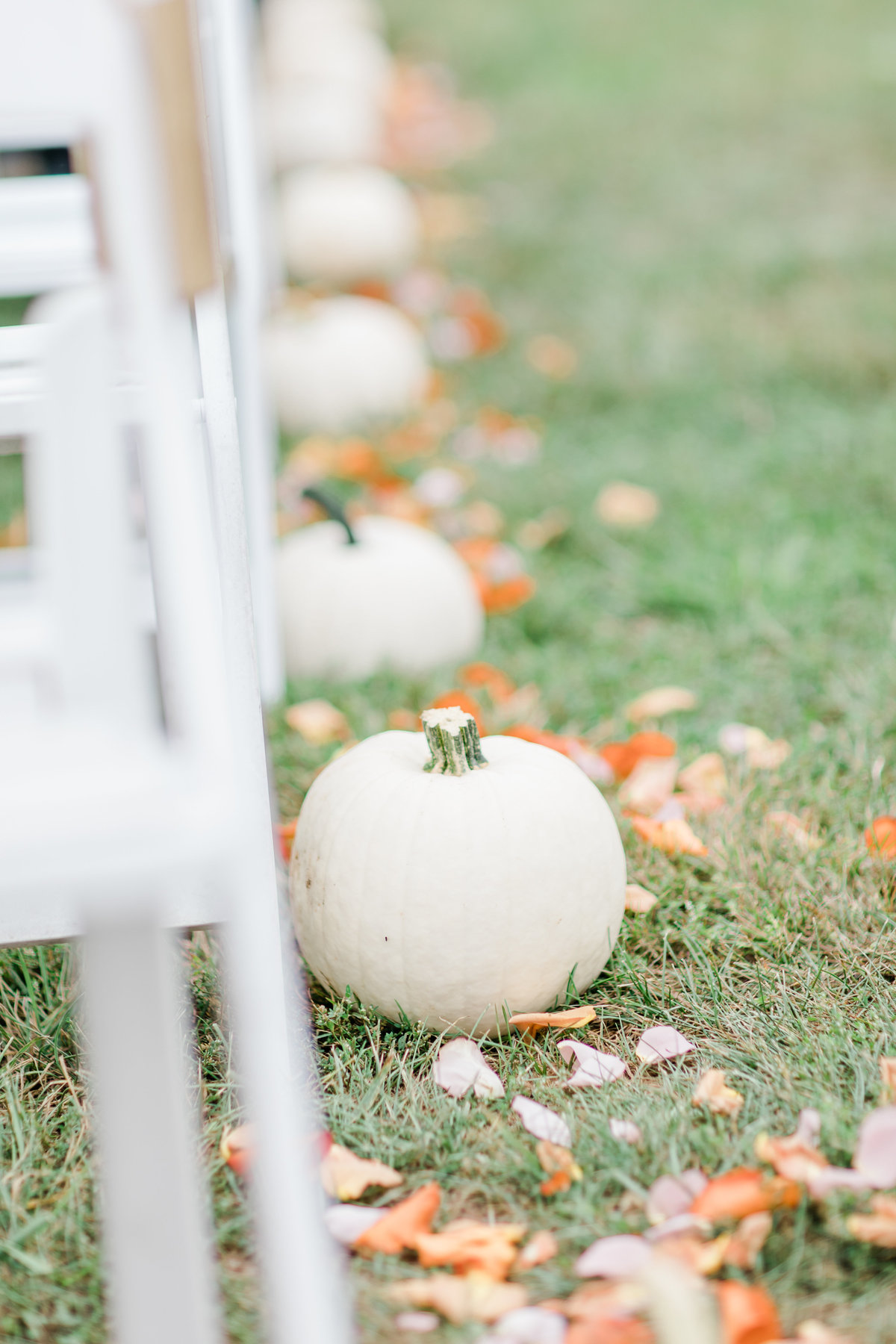 Bluestone_Vineyard_Fall_Wedding_Virginia_DC_Photographer_Angelika_Johns_Photography-4082