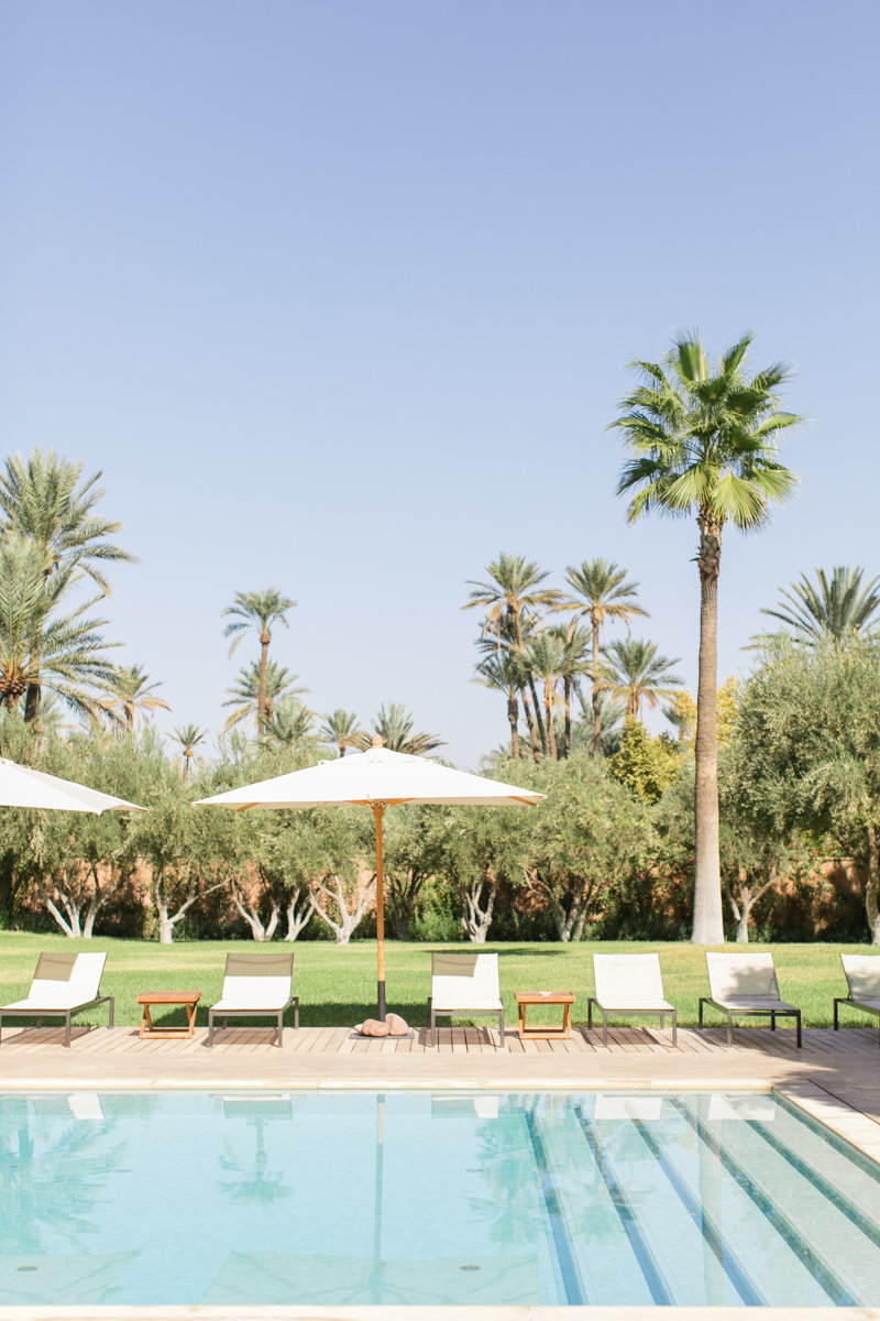 palm-trees-travel-print-roberta-facchini-photography-2