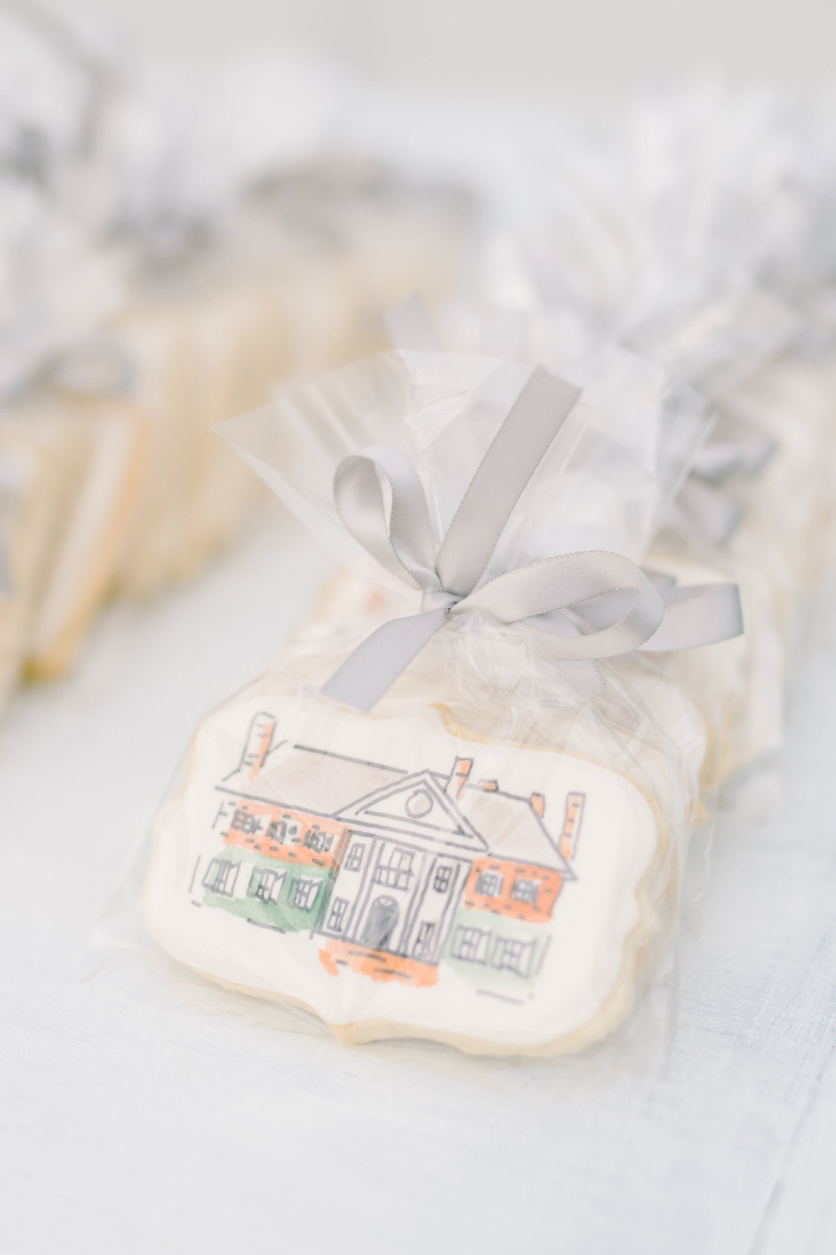 Boone Hall Plantation Custom Hand Painted Cookies