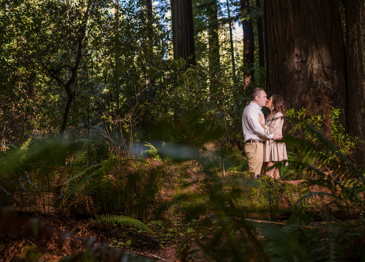 Redway-California-engagement-photographer-Parky's-Pics-Photography-Humboldt-County-redwoods-Avenue-of-the-Giants-engagement-3.jpg
